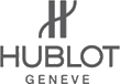 Hublot Geneve Watches